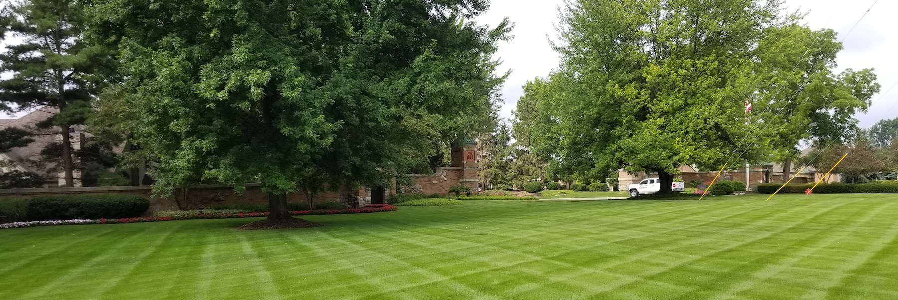 Ever So Green | Fertiliztion & Weed Control